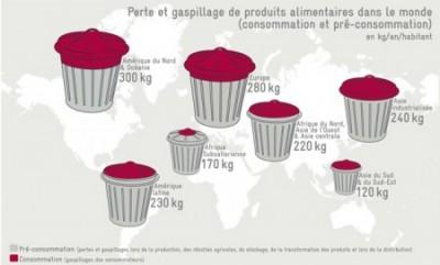 Gaspillage alimentaire : la DLUO supprimée !
