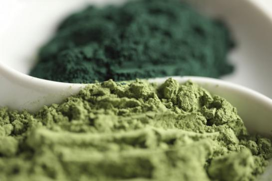 La spiruline, micro-algue 100% bienfaits