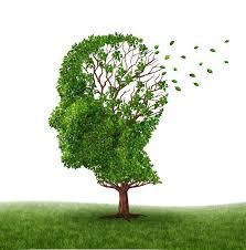 Alzheimer, comment prévenir (et ralentir) la maladie ?